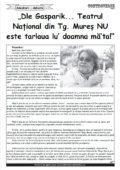 """""""Dle Gasparik… Teatrul Naţional din Tg. Mureş NU este tarlaua lu' doamna măta!"""""""